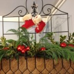 window box w stockings